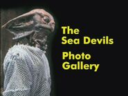 The Sea Devils Photo Gallery