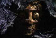 DA Master close up