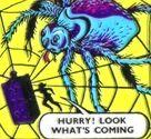 GASP Spider's Web Spider