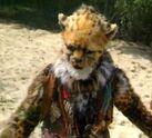 Cheetah per