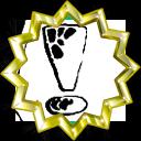 Badge-2373-6