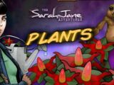 Plants (video game)