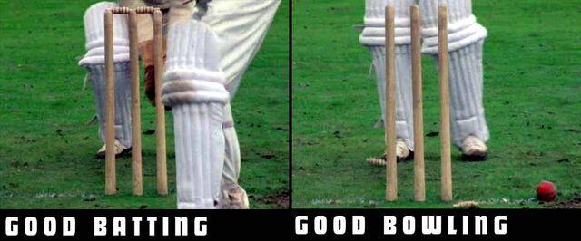 File:Stump comparison.jpg