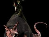 O Rato Rei