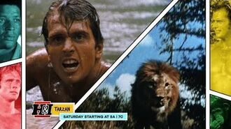 Tarzan - Saturdays