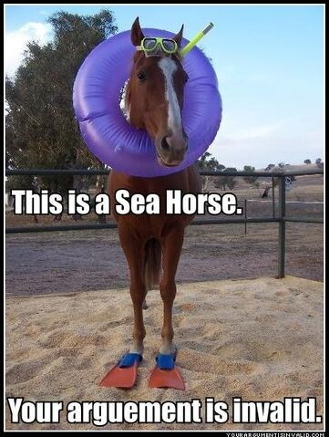 File:Sea horse.jpg