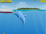Tale of a Dolphin