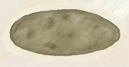 Paramecium Lite