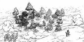 Bosque Zetsu
