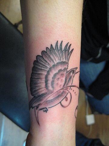 File:Bird1.jpg