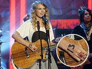 Taylor swift13