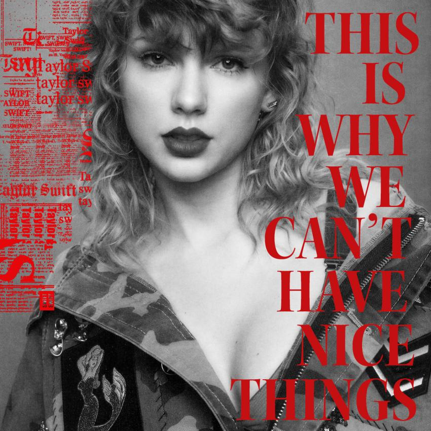 Image result for taylor swift this is why we can't have nice things