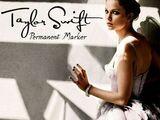 Permanent Marker (lyrics)