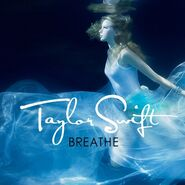 Breathe-FanMade-Single-Cover-fearless-taylor-swift-album-14878005-500-500