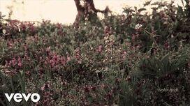 Taylor Swift - the lakes (Lyric Video)