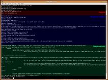 Http request telnet ubuntu