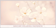 Samichan-phenomena b