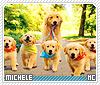 Michell-animalia