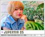 Jupernia-froots5