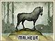 Malheur-mythos