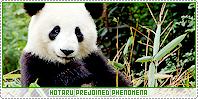Hotaru-phenomena b