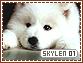 Skylen-elements1