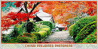 Chiisai-phenomena b