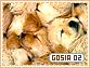 Gosia-elements2