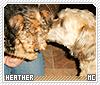 Heather1-animalia
