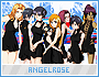 Angelrose-drawings