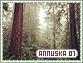 Annuska-elements1