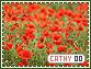 Cathy-elements0