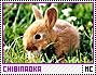 Chibinaoka-discover