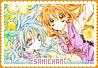 Samichan-snow