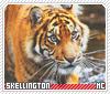 Skellington-animalia
