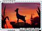 Malheur-somagical5