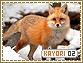 Kayori-elements2