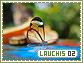 Lauchis-elements2