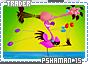 Pshaman-somagical15