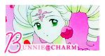 Bunnie-charm