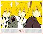 Nhu-drawings