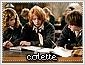 Colette-choices