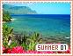 Summer-elements1