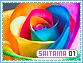 Saitaina-elements n1