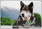 Ash-wonderland b