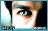 Hayley-bloodlines