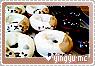 Yingyu-somethingscooking