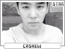 Cashew-sme