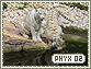 Phyx-elements2