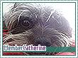Catherine-natura